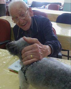 Visita dos cães